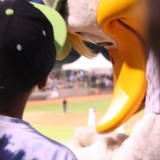 Long Island Ducks mascot QuackerJack gives a fan an autograph. (July 24, 2012) Photo by Joshua Odam