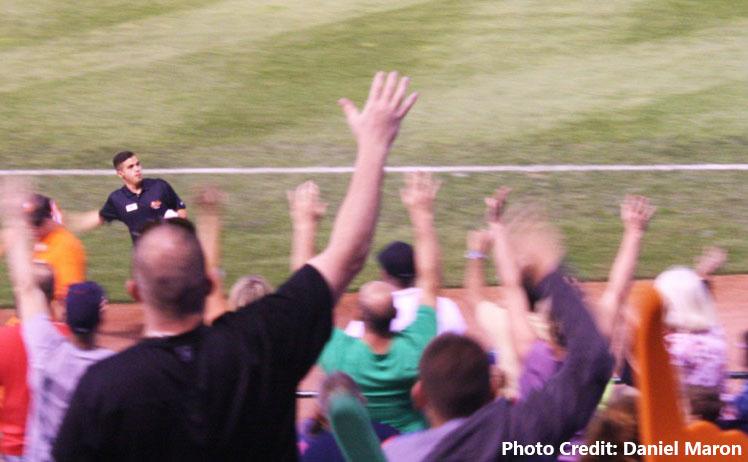 Ducks fans dodge line drives, flying bats – still quack for hometown team
